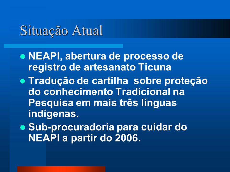 Situação Atual NEAPI, abertura de processo de registro de artesanato Ticuna.