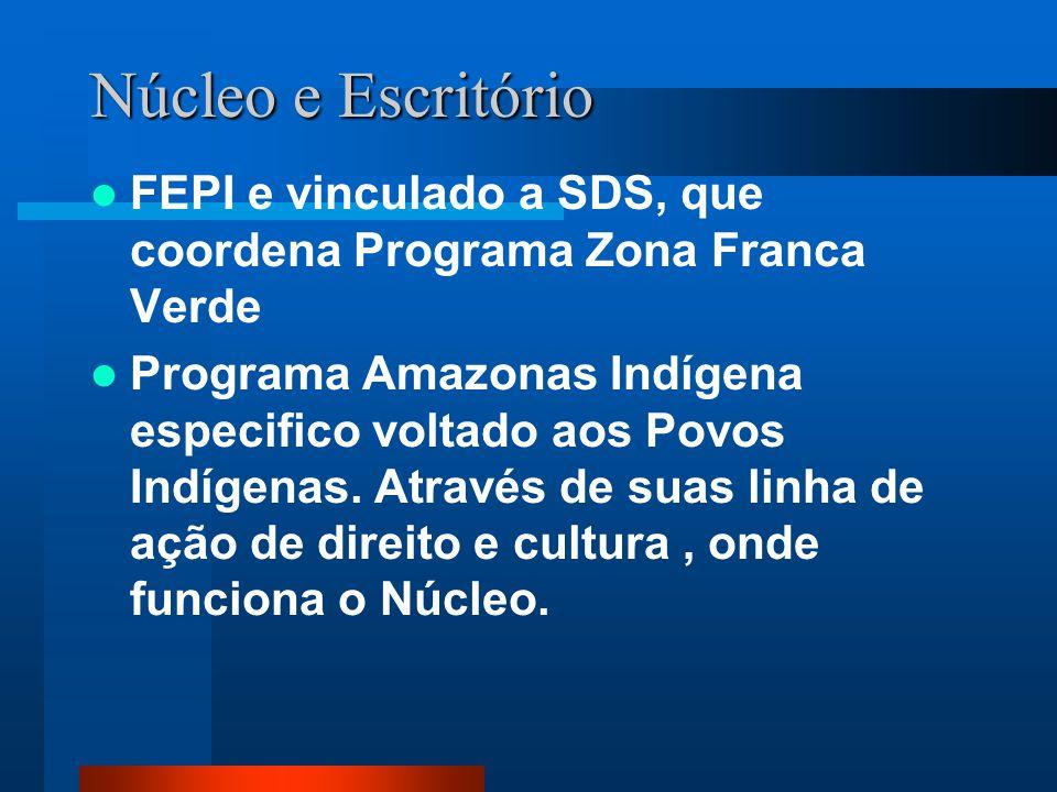 Núcleo e Escritório FEPI e vinculado a SDS, que coordena Programa Zona Franca Verde.