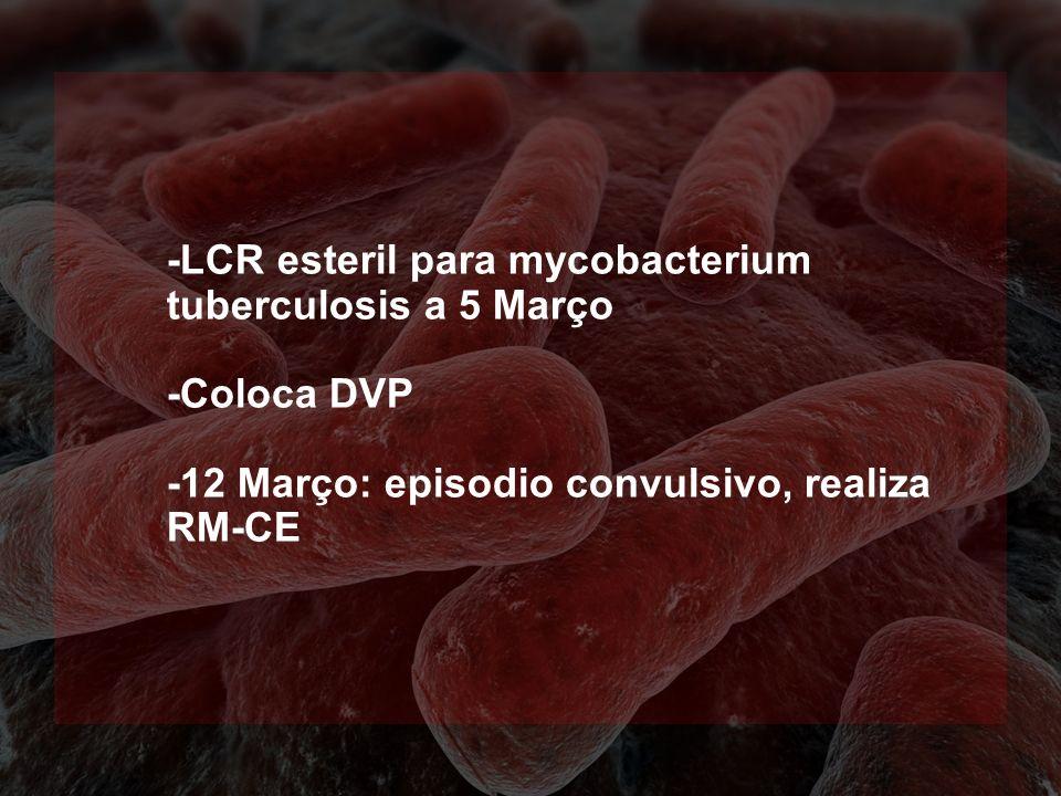 -LCR esteril para mycobacterium tuberculosis a 5 Março