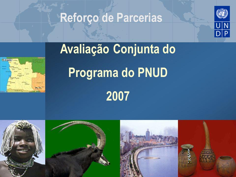 Avaliação Conjunta do Programa do PNUD 2007
