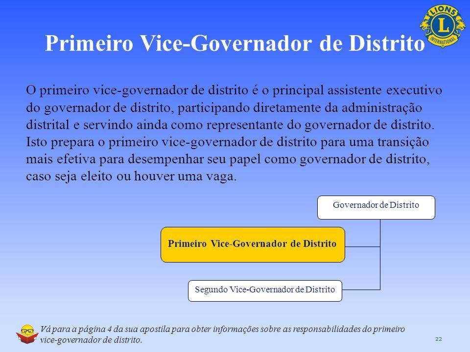 Primeiro Vice-Governador de Distrito