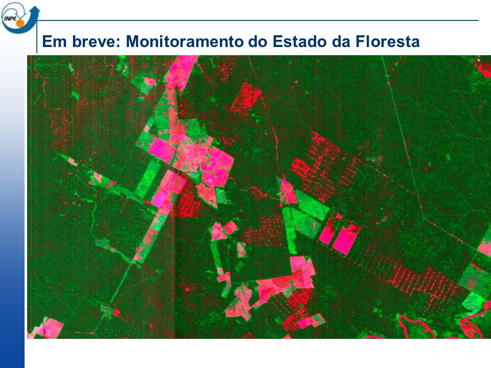 Em breve: Monitoramento do Estado da Floresta
