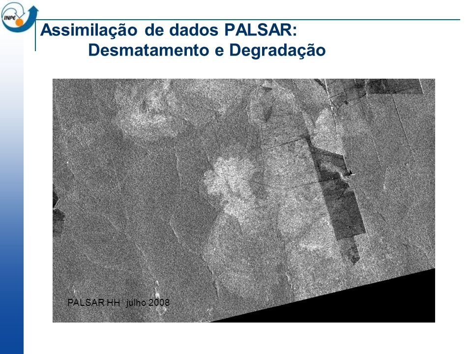 Assimilação de dados PALSAR: Desmatamento e Degradação