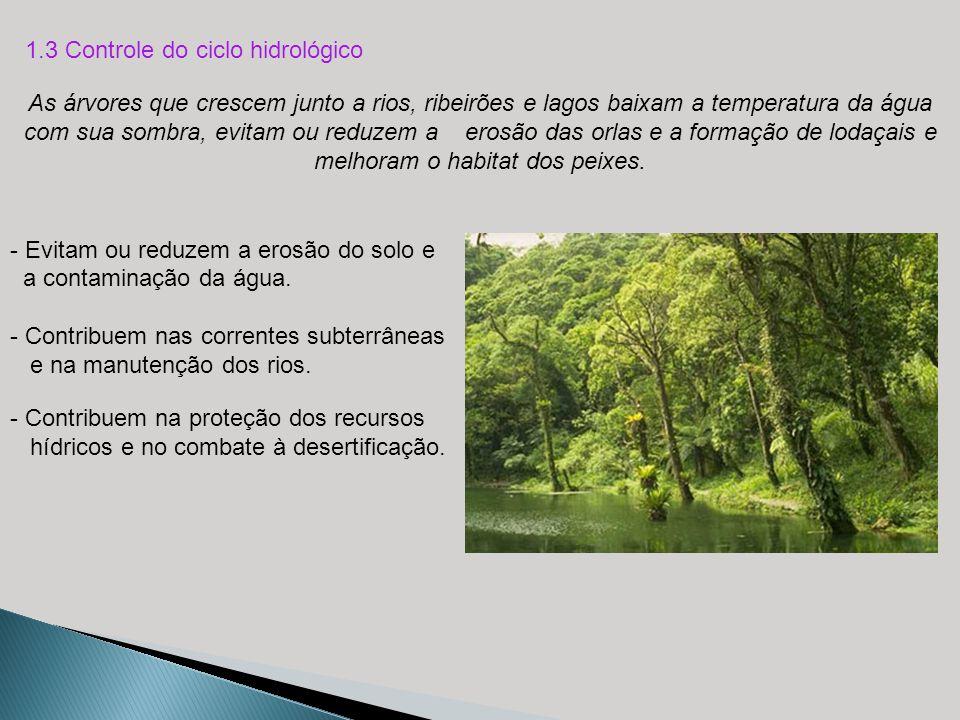 1.3 Controle do ciclo hidrológico