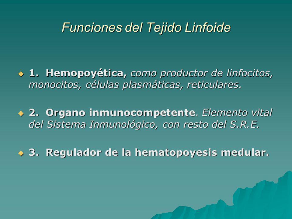 Funciones del Tejido Linfoide