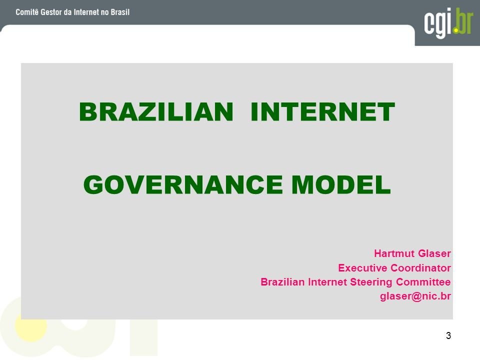 BRAZILIAN INTERNET GOVERNANCE MODEL Hartmut Glaser