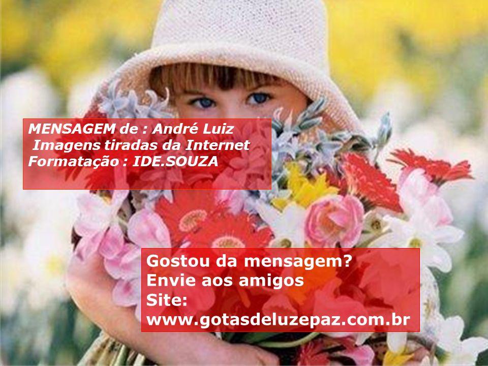 Site: www.gotasdeluzepaz.com.br