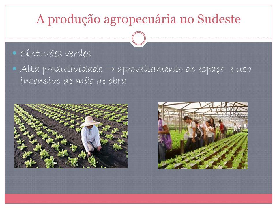 A produção agropecuária no Sudeste