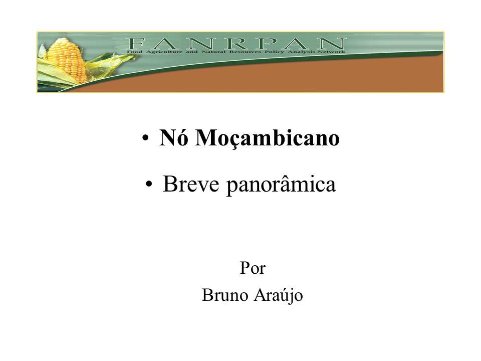 Nó Moçambicano Breve panorâmica Por Bruno Araújo