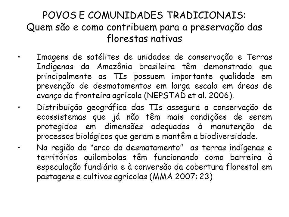 POVOS E COMUNIDADES TRADICIONAIS: Quem são e como contribuem para a preservação das florestas nativas