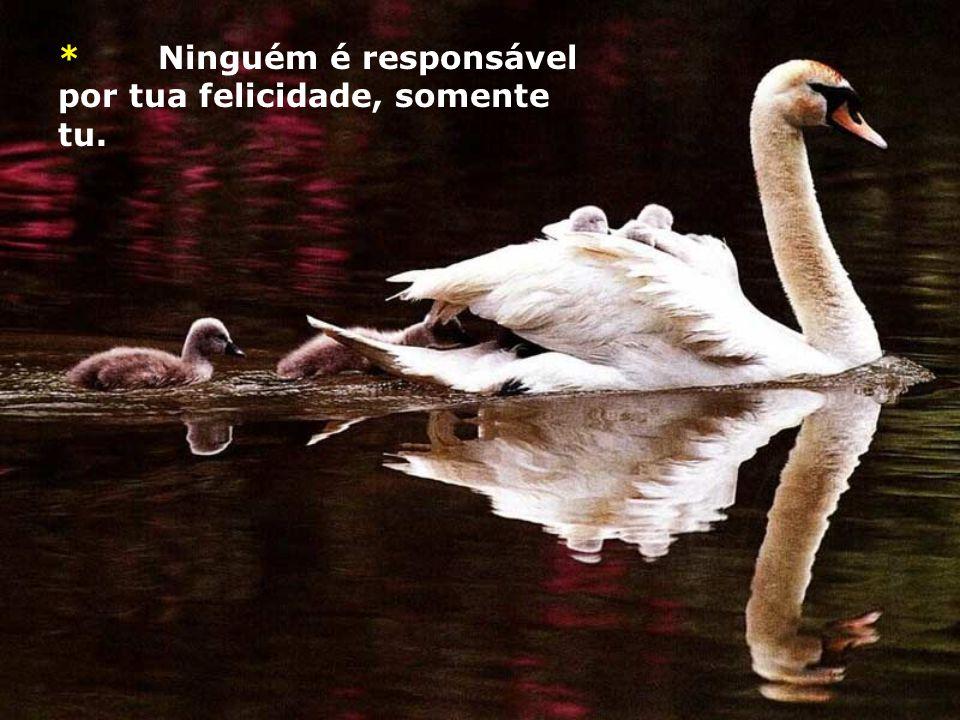 * Ninguém é responsável por tua felicidade, somente tu.