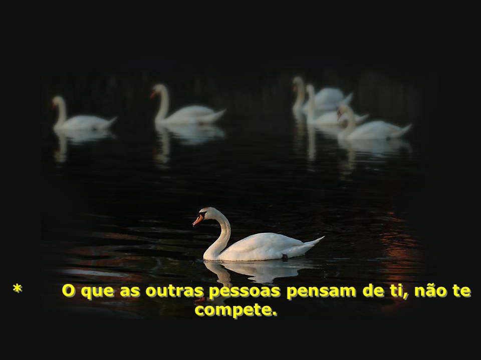 * O que as outras pessoas pensam de ti, não te compete.