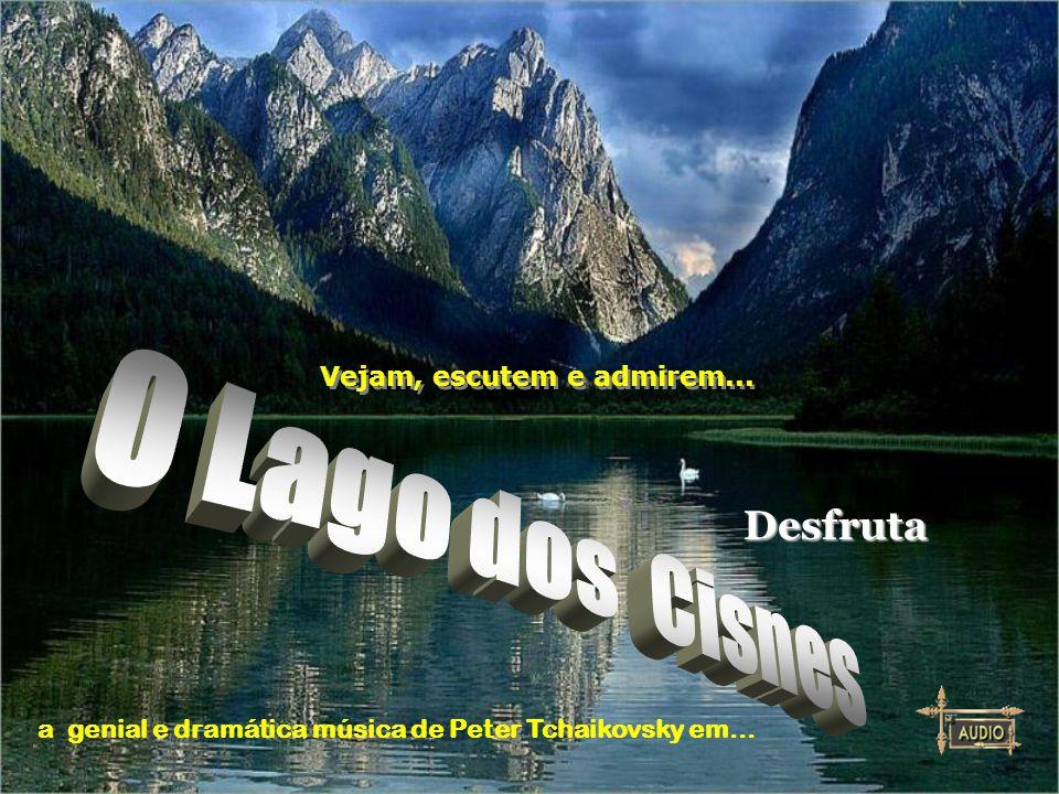 O Lago dos Cisnes Desfruta Vejam, escutem e admirem...