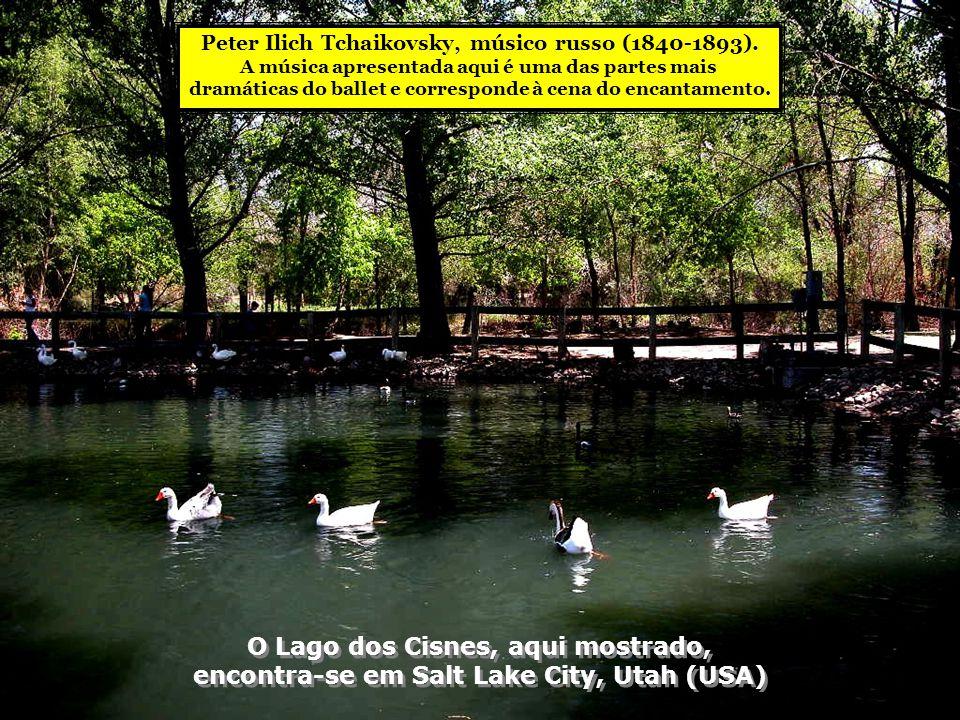 O Lago dos Cisnes, aqui mostrado,