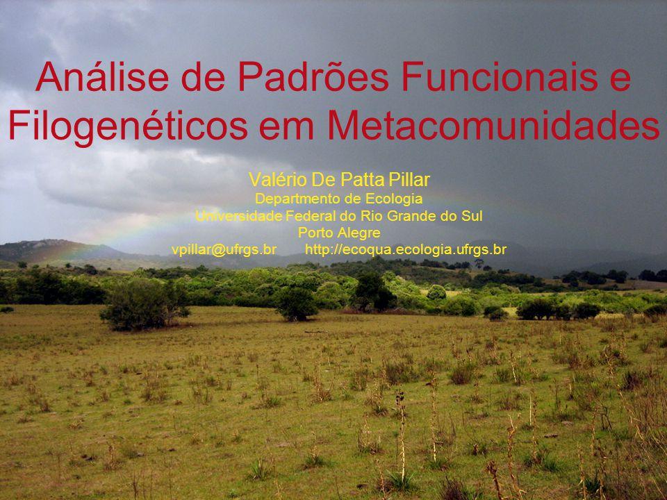 Análise de Padrões Funcionais e Filogenéticos em Metacomunidades