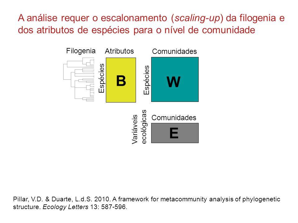 A análise requer o escalonamento (scaling-up) da filogenia e dos atributos de espécies para o nível de comunidade