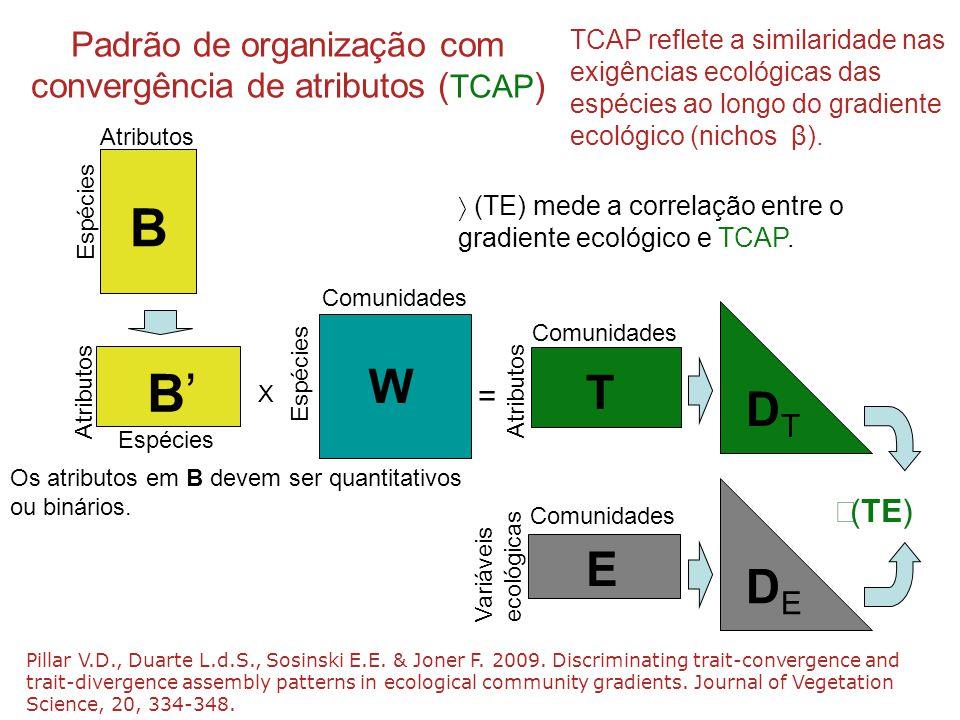 Padrão de organização com convergência de atributos (TCAP)