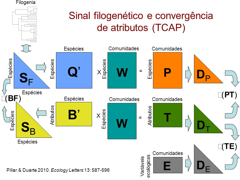 Sinal filogenético e convergência de atributos (TCAP)