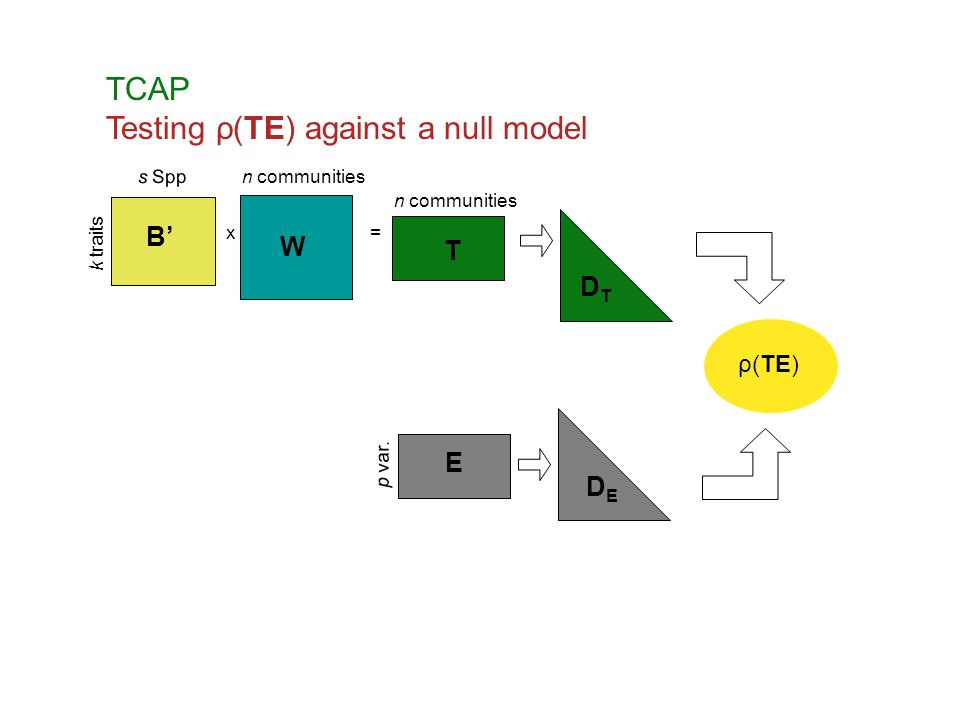 Testing ρ(TE) against a null model