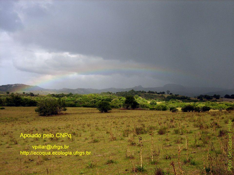 Apoiado pelo CNPq Foto de Gabriel Pillar vpillar@ufrgs.br
