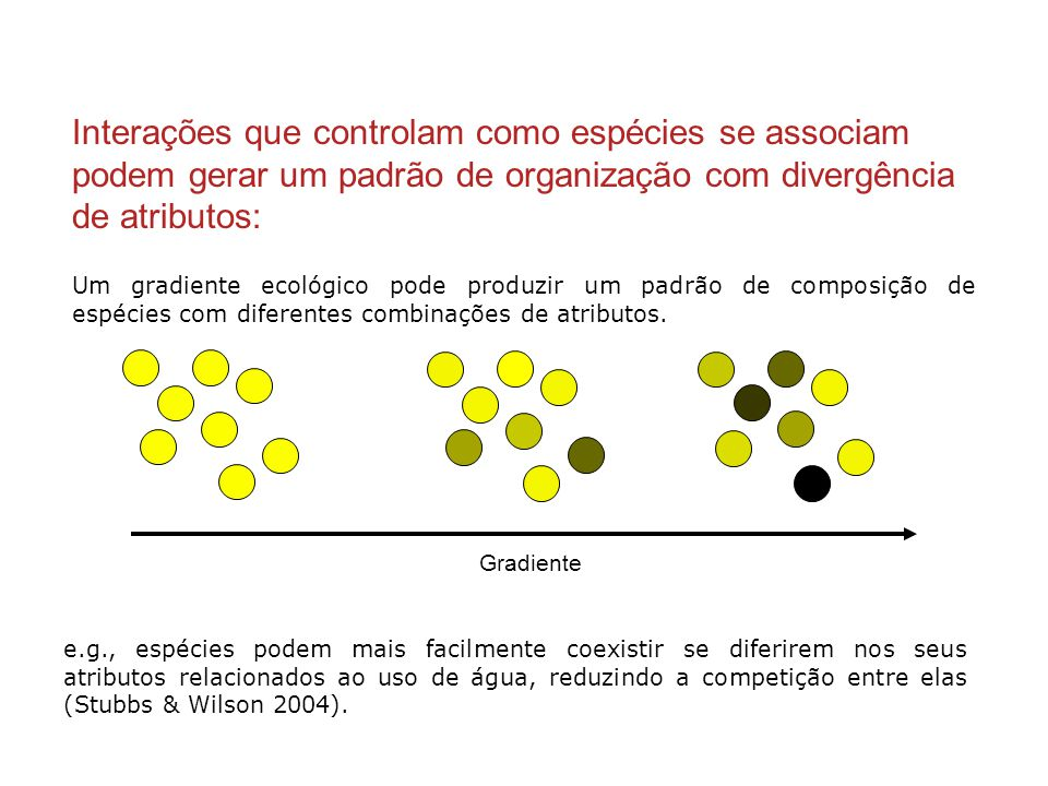 Interações que controlam como espécies se associam podem gerar um padrão de organização com divergência de atributos: