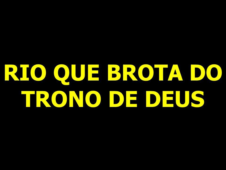 RIO QUE BROTA DO TRONO DE DEUS