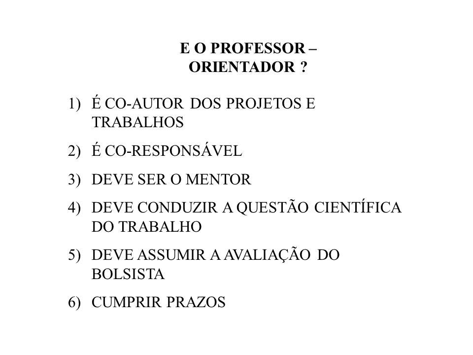 E O PROFESSOR – ORIENTADOR