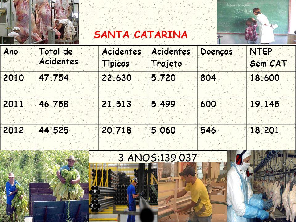 SANTA CATARINA 3 ANOS:139.037 Ano Total de Acidentes Acidentes Típicos