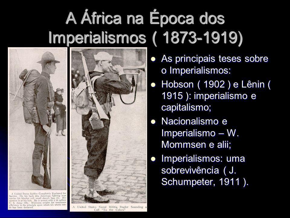 A África na Época dos Imperialismos ( 1873-1919)