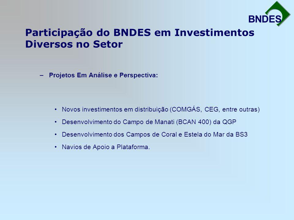 Participação do BNDES em Investimentos Diversos no Setor