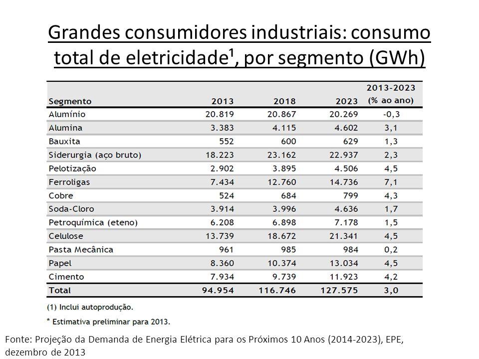 Grandes consumidores industriais: consumo total de eletricidade¹, por segmento (GWh)