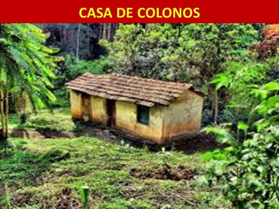 CASA DE COLONOS