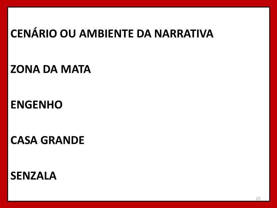 CENÁRIO OU AMBIENTE DA NARRATIVA ZONA DA MATA ENGENHO CASA GRANDE SENZALA