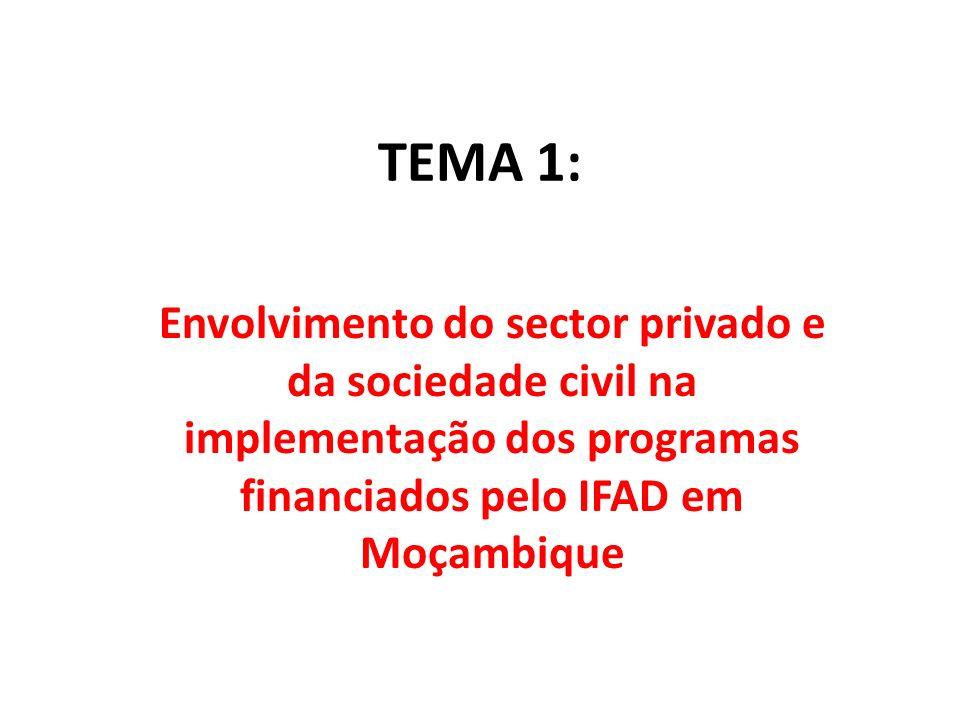 TEMA 1: Envolvimento do sector privado e da sociedade civil na implementação dos programas financiados pelo IFAD em Moçambique.