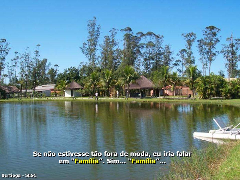 P0001424-SESC BERTIOGA - LAGO PARA REMO-700
