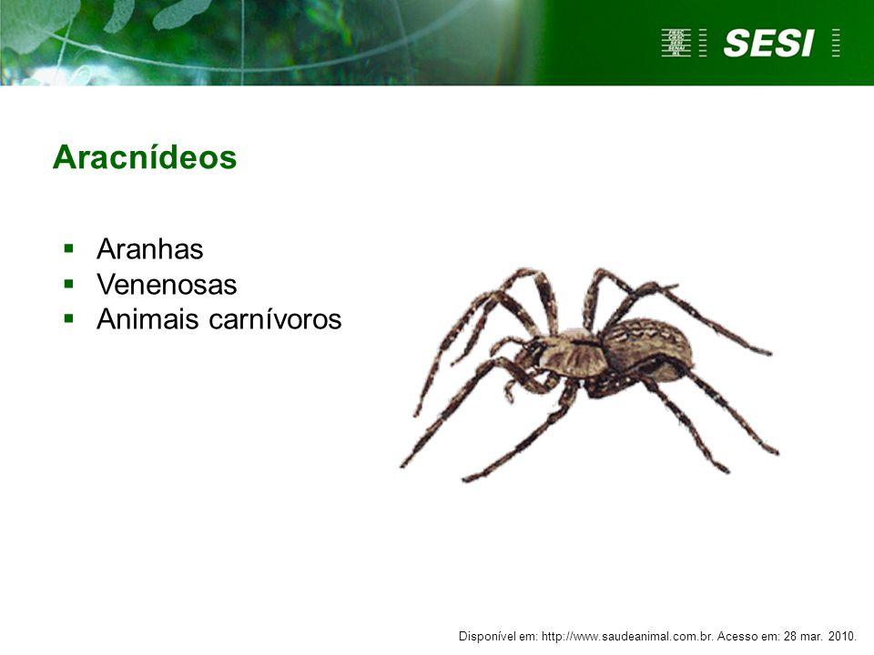 Aracnídeos Aranhas Venenosas Animais carnívoros Comentário:
