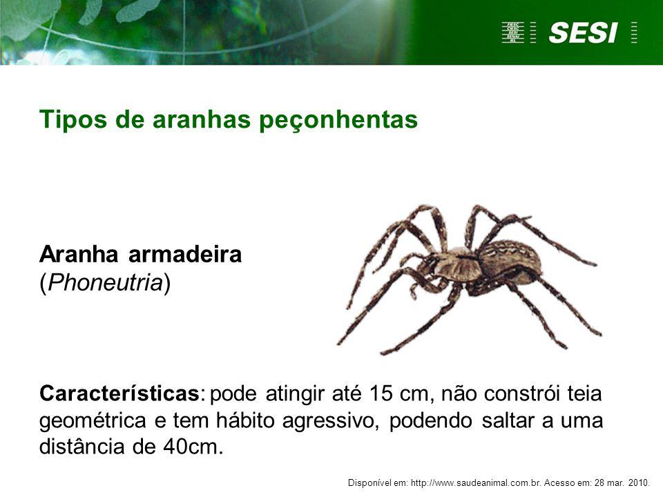 Tipos de aranhas peçonhentas