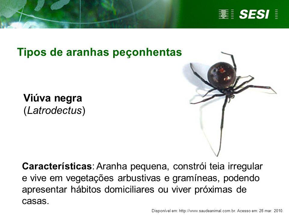 Viúva negra (Latrodectus)
