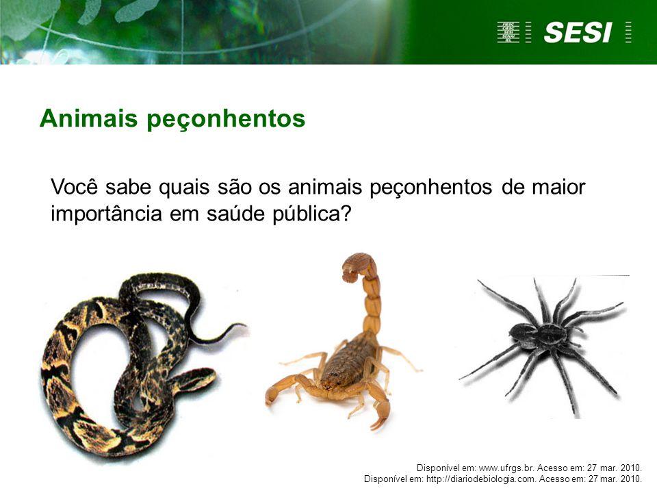 Animais peçonhentos Você sabe quais são os animais peçonhentos de maior importância em saúde pública