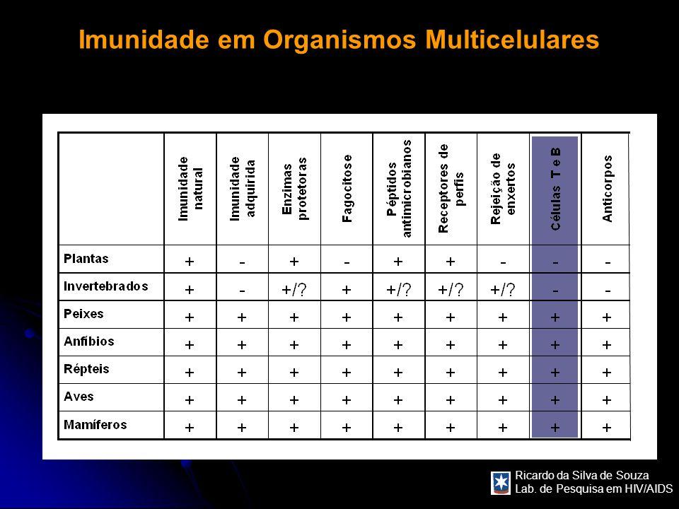 Imunidade em Organismos Multicelulares