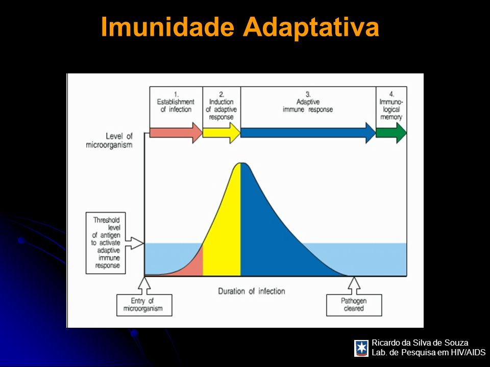 Imunidade Adaptativa COMENTARIOS: