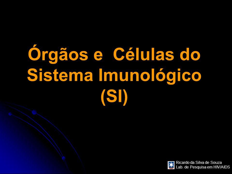 Órgãos e Células do Sistema Imunológico (SI)