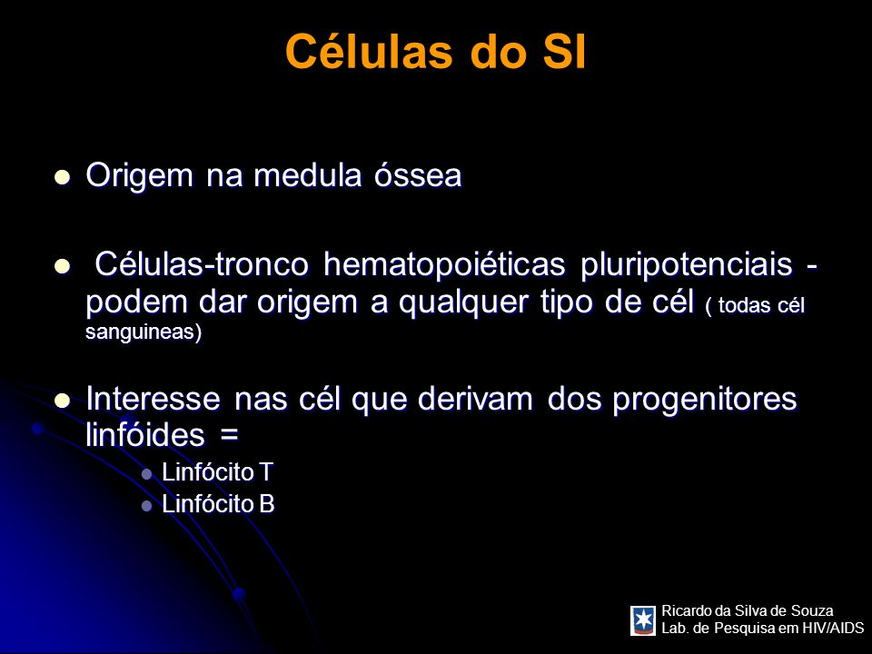 Células do SI Origem na medula óssea