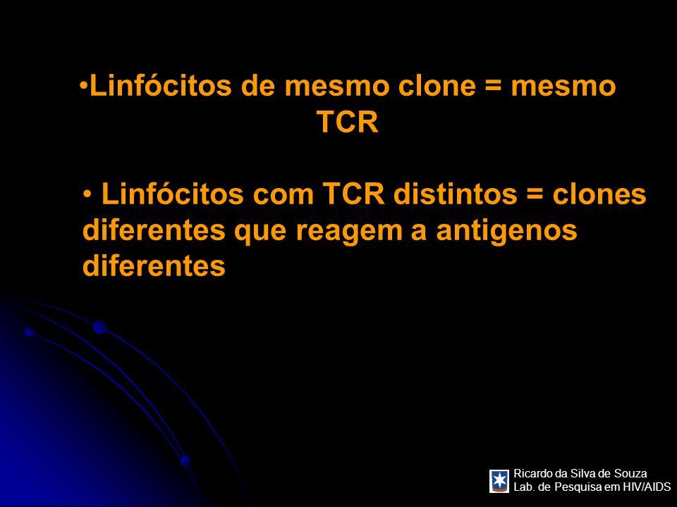 Linfócitos de mesmo clone = mesmo TCR