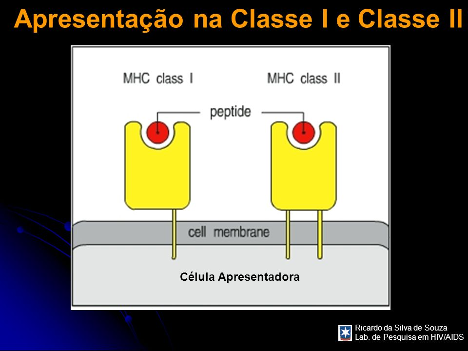 Apresentação na Classe I e Classe II