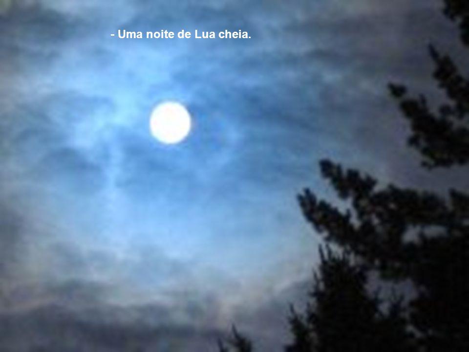 - Uma noite de Lua cheia.