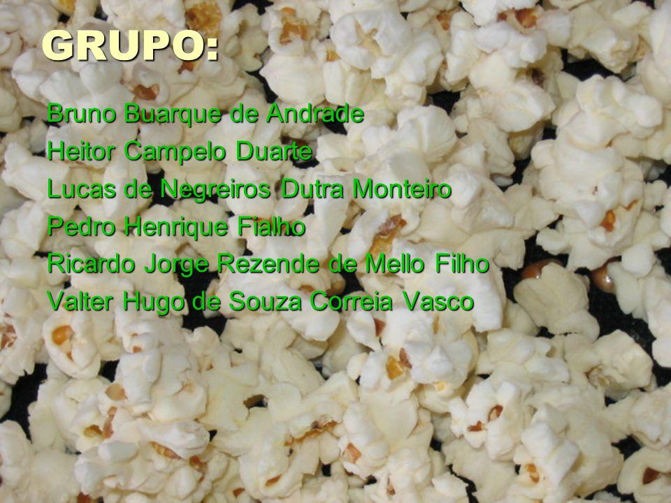 GRUPO: Bruno Buarque de Andrade Heitor Campelo Duarte