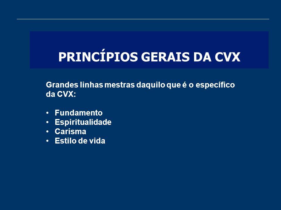 PRINCÍPIOS GERAIS DA CVX