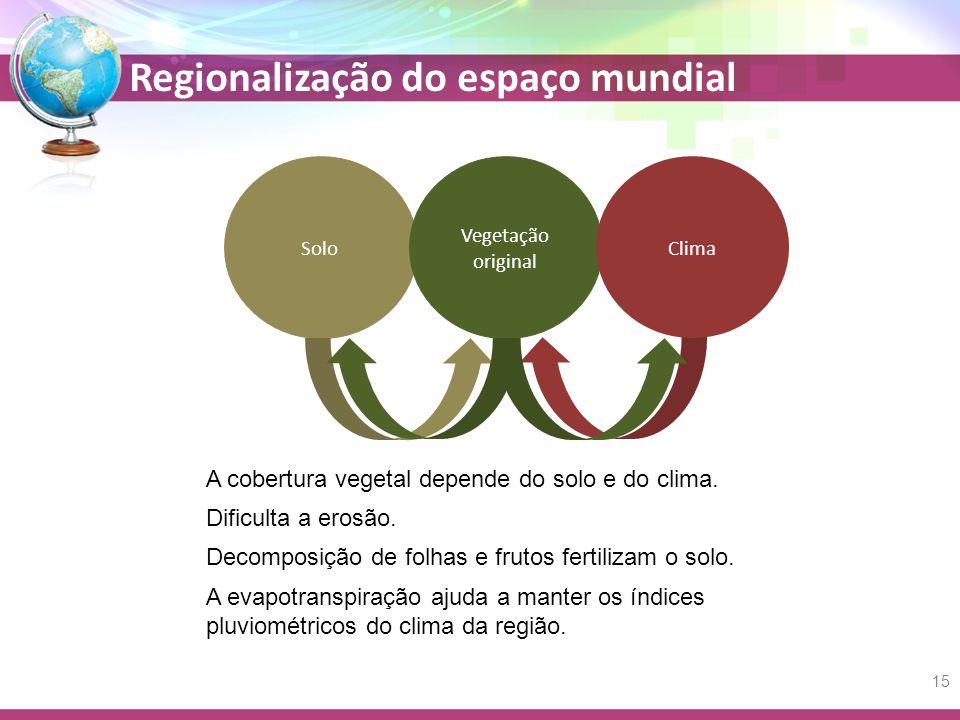 A cobertura vegetal depende do solo e do clima.