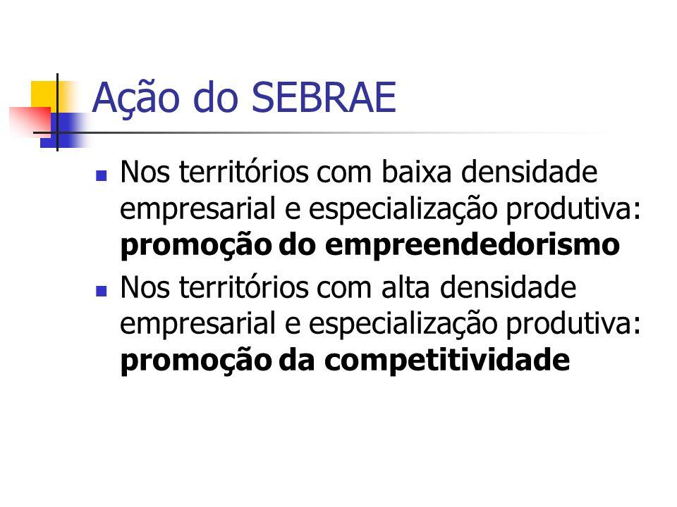 Ação do SEBRAENos territórios com baixa densidade empresarial e especialização produtiva: promoção do empreendedorismo.
